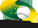 Baseball Australia Insurance Information